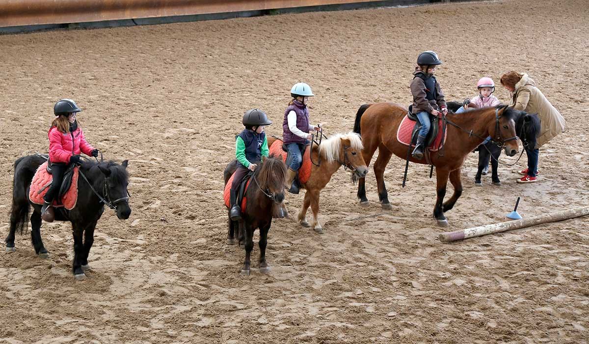 cours poney galop 3