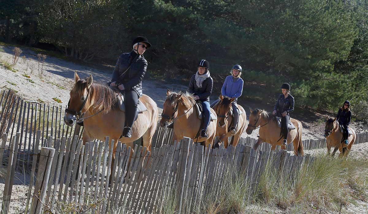 galop balade découverte cheval plage
