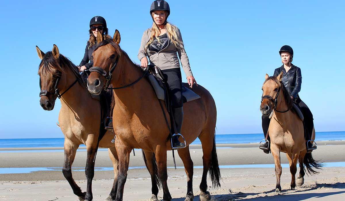 balade plage cheval débutant