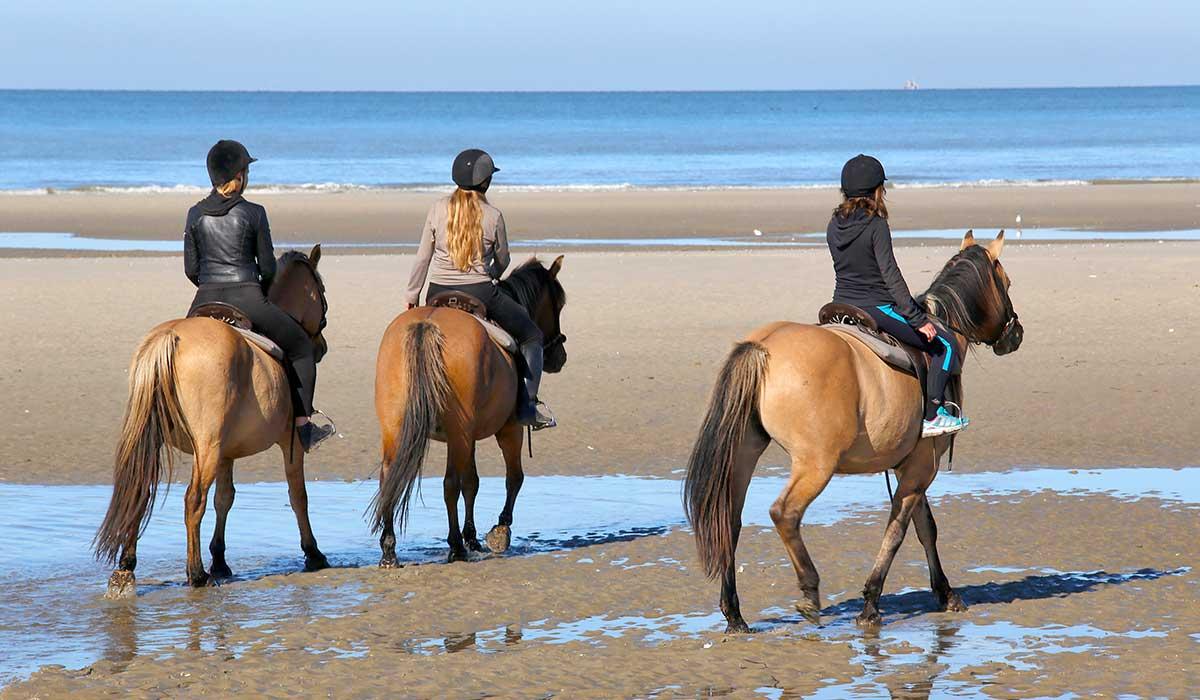 rando plage cheval dos