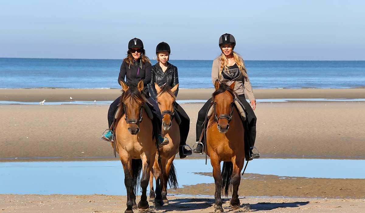 balade plage cheval