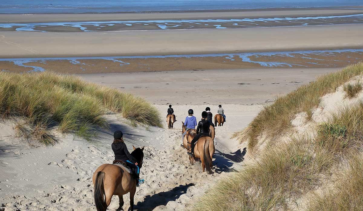 balade descente plage cheval