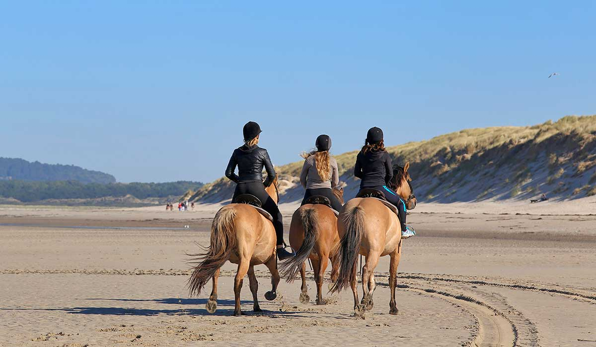 galop balade plage cheval