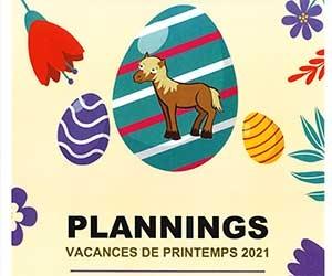 planning-cheval-poney