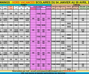 planning-poney-cheval-hors-